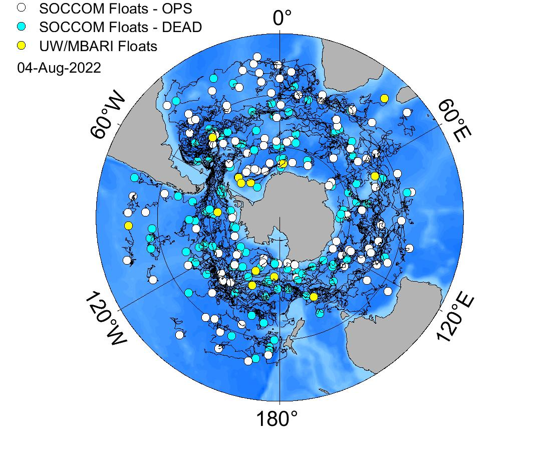 SOCCOM Polar projection map